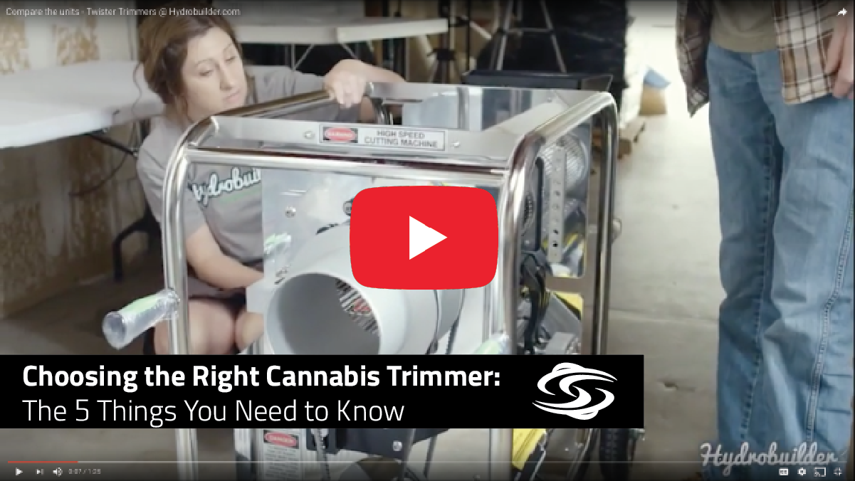 Choosing the Right Cannabis Trimmer: 5 Things You Need to Know